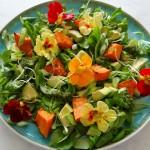 Salade met avocado en geroosterde pompoen