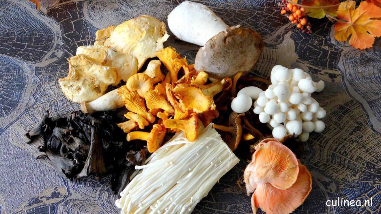 Zeg je herfst dan zeg je paddenstoelen