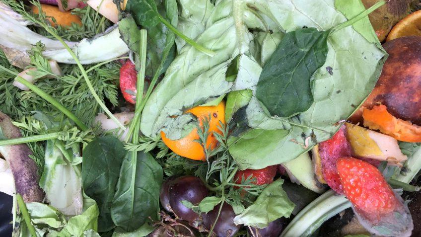 Hoe kunnen we voedselverspilling tegengaan