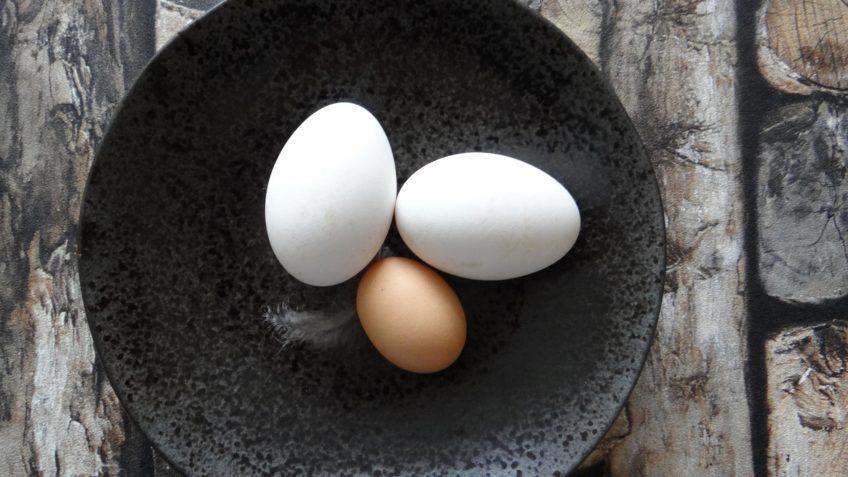 Scrambled egg van ganzenei met gerookte zalm en dille
