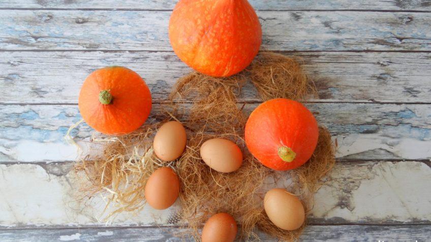 Biologische pompoenen en eieren uit Zeewolde