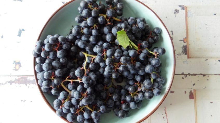 Blauwe druiven siroop