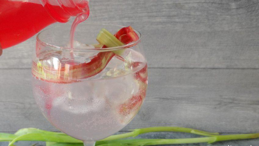 Gin Tonic met rabarbersiroop