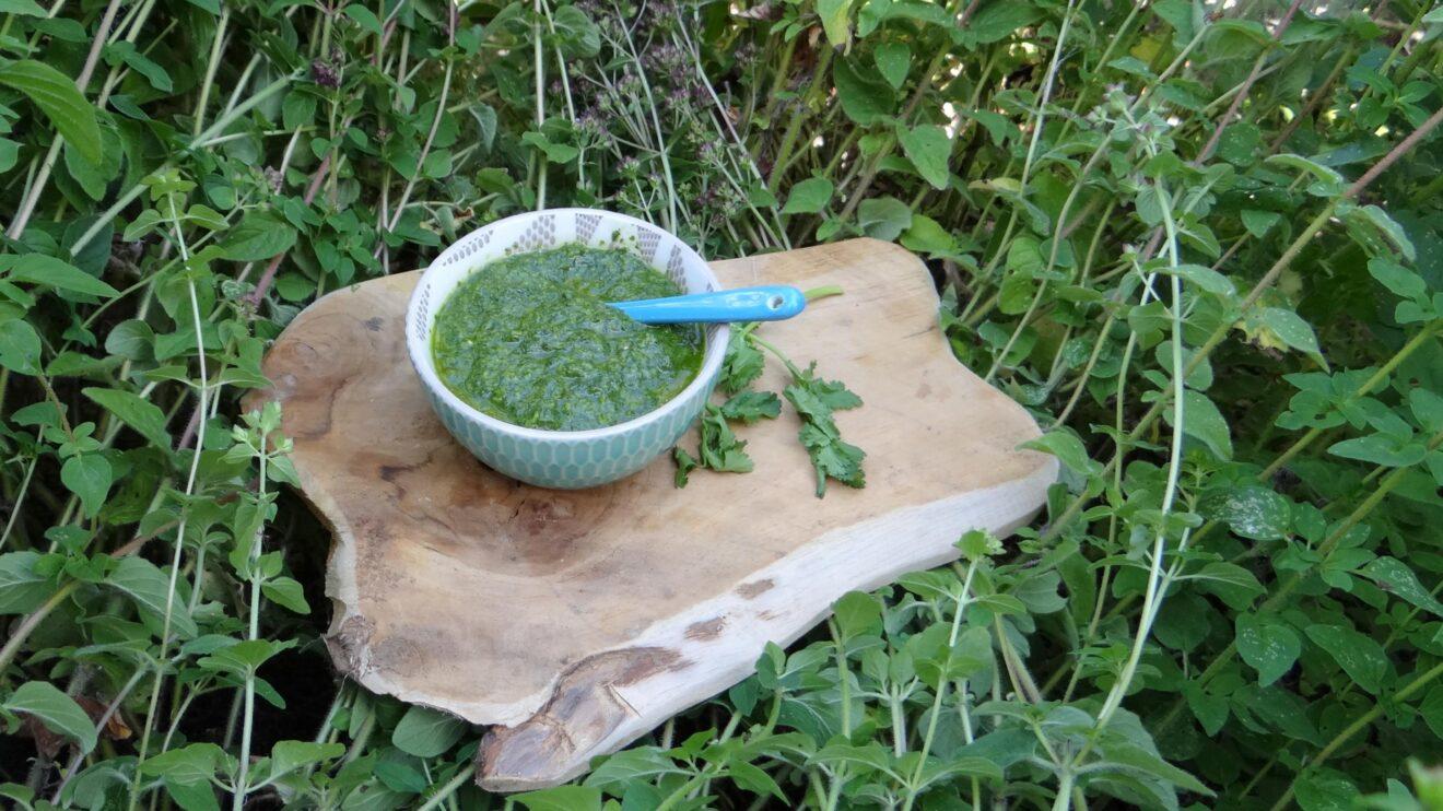 Groene kruidensaus Mojo verde