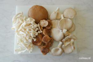 Pappardelle met paddenstoelen en roomsaus