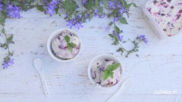 Geitenyoghurt ijs met blauwe bessen