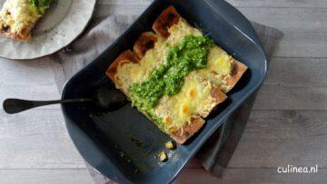 Enchilada met vegetarische kip en groente