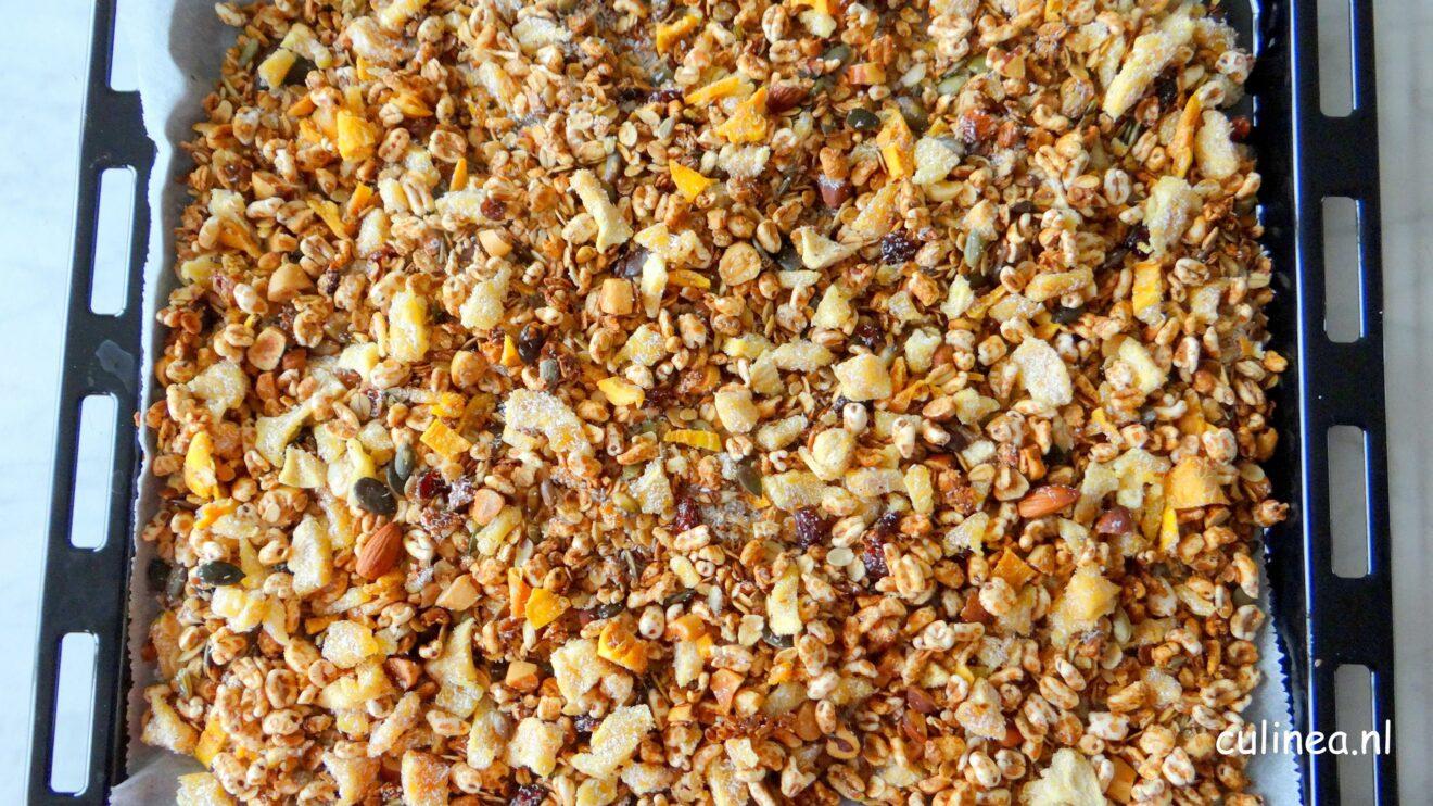 Tropisch fruit granola